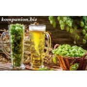лицензия на пиво
