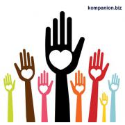 Регистрация общественной организации